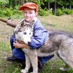 Сибирский хаски Сёмга