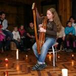 Концерт Кельтской арфы в Музее Леса