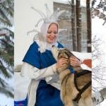 Зимние программы, Новый год