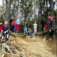Двухсоставные программы «Музей+Лес»